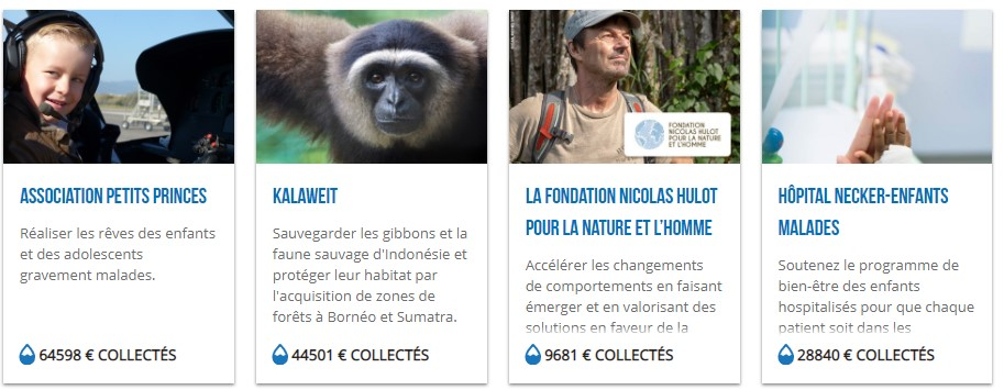 moteur-recherche-alternatif-ecolo-lilo-projets